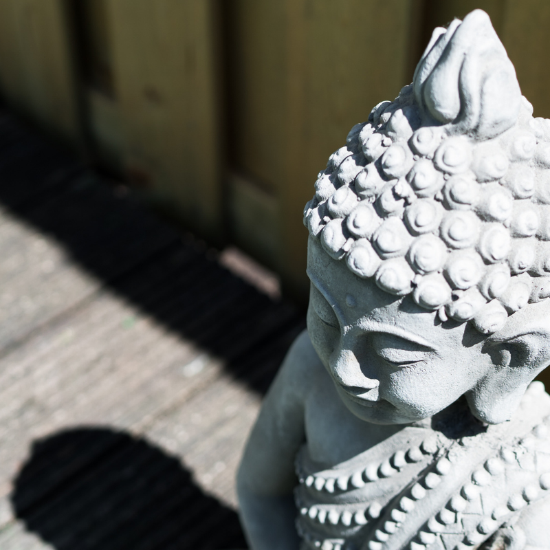 gratis webinar mindfulness training
