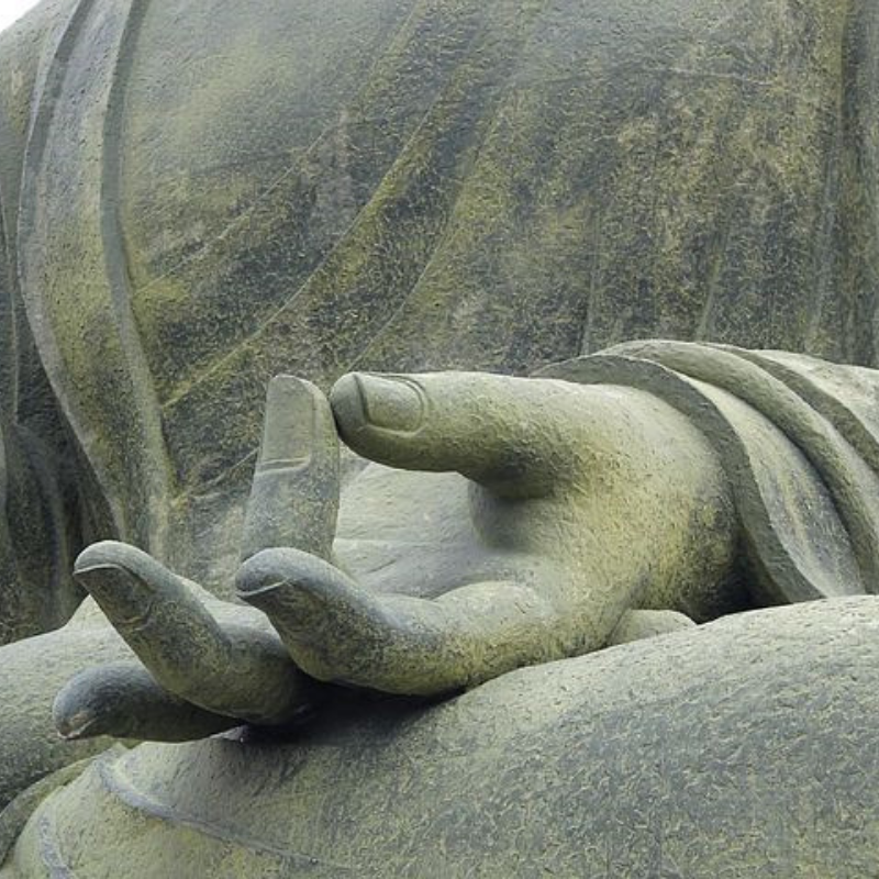 buddha hands close-up.png
